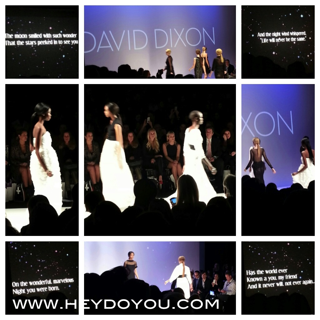 David Dixon SS14: I love how this collection was presented!